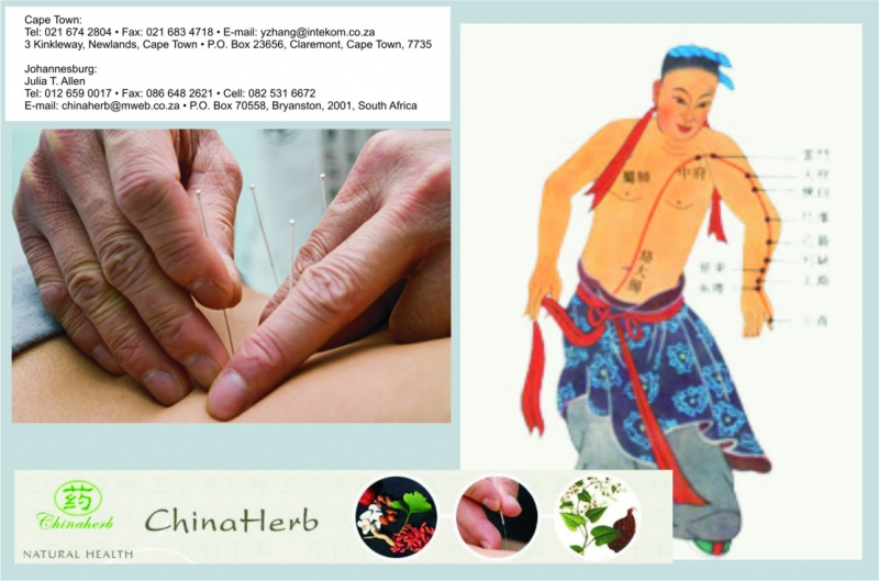 China Herb and Acupuncture